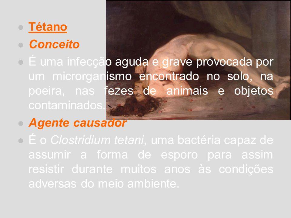Tétano Conceito É uma infecção aguda e grave provocada por um microrganismo encontrado no solo, na poeira, nas fezes de animais e objetos contaminados