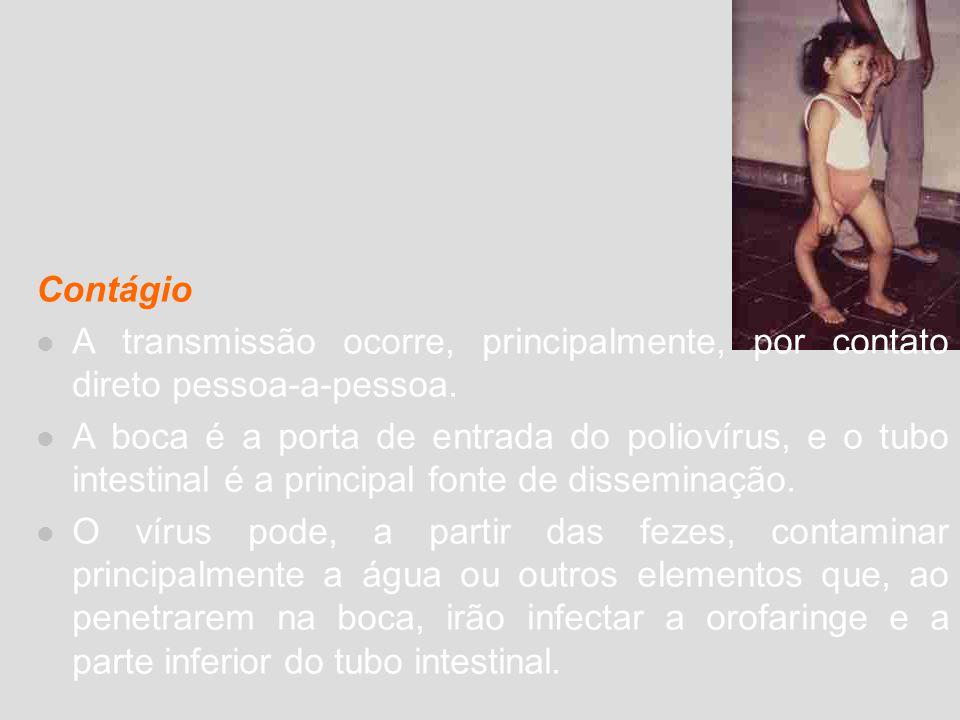 Infecções transmitidas por relação sexual Dentre as enfermidades transmitidas pela relação sexual estão a SIDA(Síndrome da Imunodeficiência Adquirida) ou AIDS, e a hepatite B; a via sexual é sua principal forma de contaminação e, no Brasil, representa o meio pelo qual ocorre o maior número de casos.