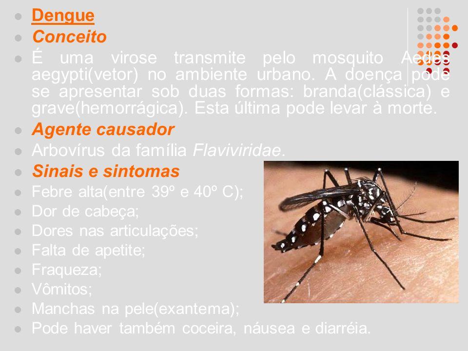 Dengue Conceito É uma virose transmite pelo mosquito Aedes aegypti(vetor) no ambiente urbano. A doença pode se apresentar sob duas formas: branda(clás