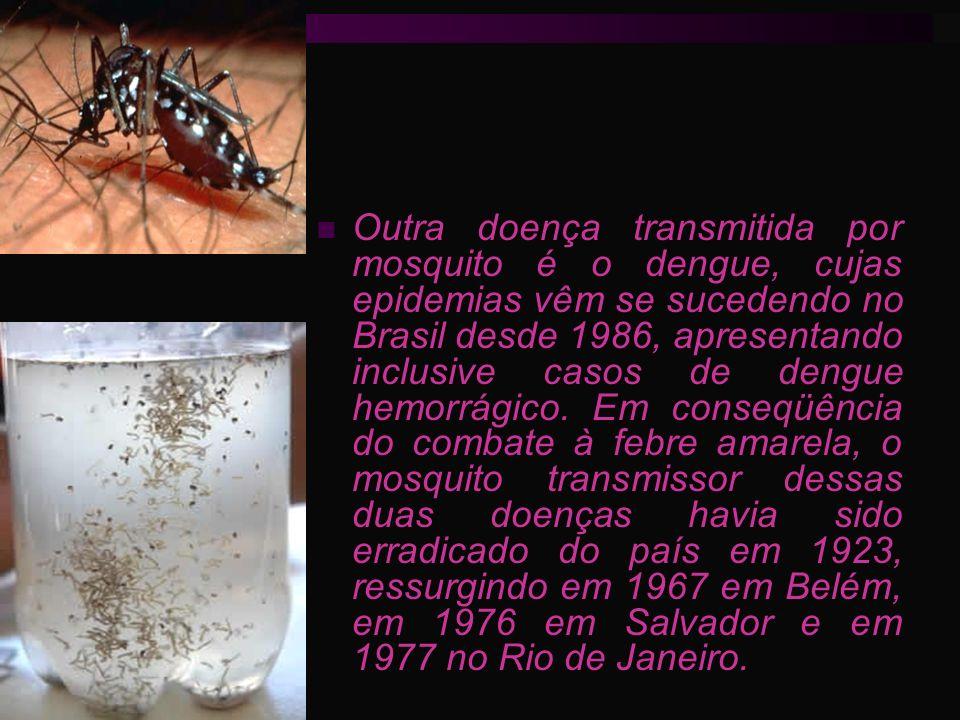 Outra doença transmitida por mosquito é o dengue, cujas epidemias vêm se sucedendo no Brasil desde 1986, apresentando inclusive casos de dengue hemorr