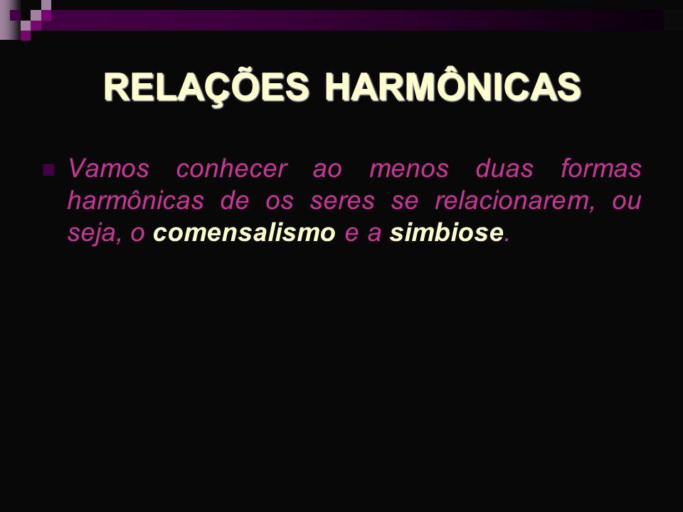 RELAÇÕES HARMÔNICAS Vamos conhecer ao menos duas formas harmônicas de os seres se relacionarem, ou seja, o comensalismo e a simbiose.