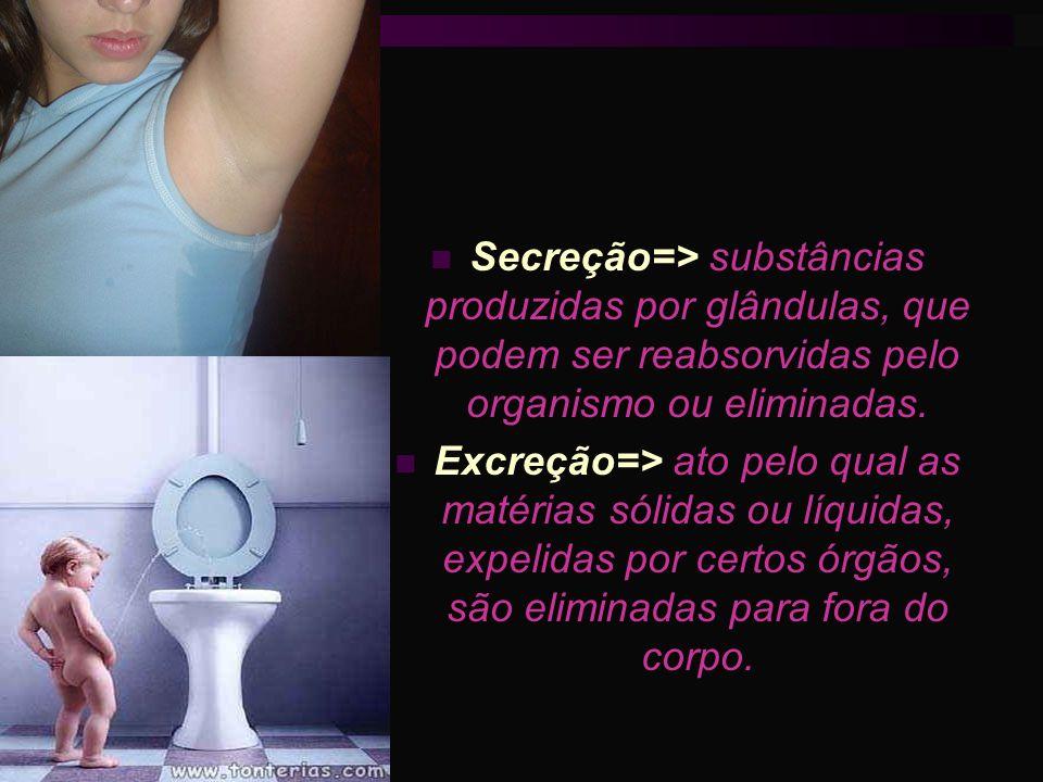 Secreção=> substâncias produzidas por glândulas, que podem ser reabsorvidas pelo organismo ou eliminadas. Excreção=> ato pelo qual as matérias sólidas