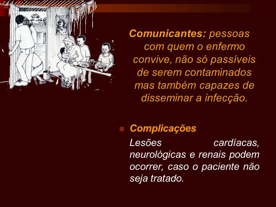 Comunicantes: pessoas com quem o enfermo convive, não só passíveis de serem contaminados mas também capazes de disseminar a infecção. Complicações Les