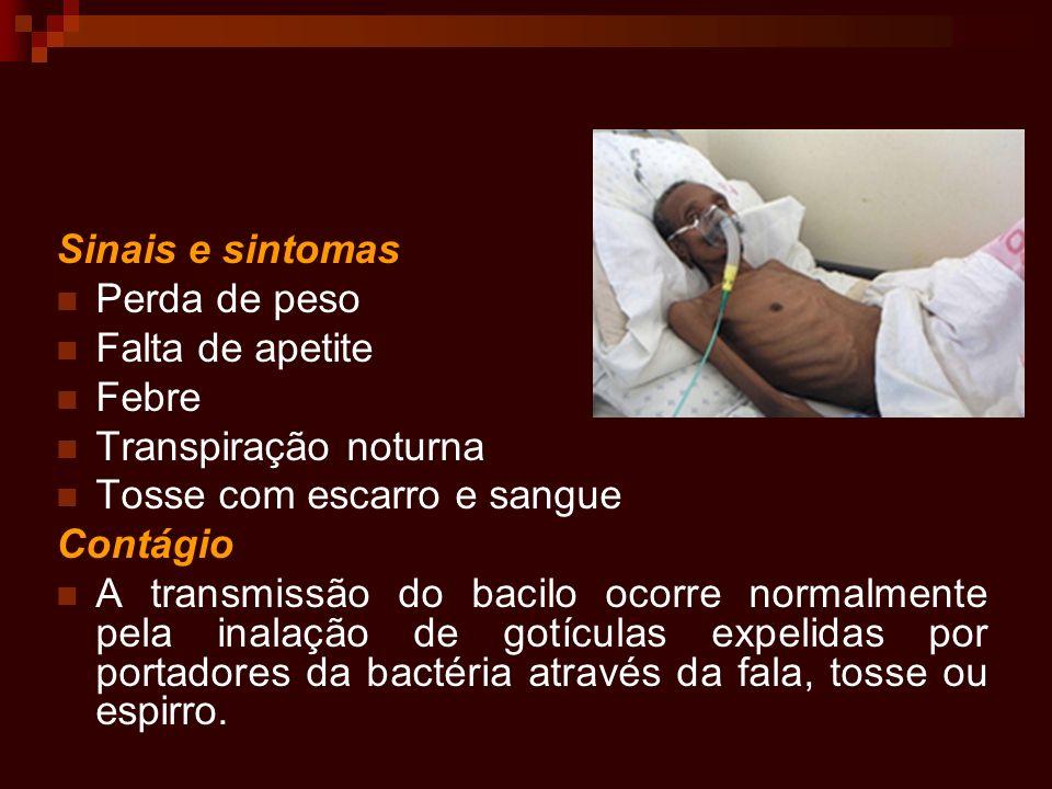 Sinais e sintomas Perda de peso Falta de apetite Febre Transpiração noturna Tosse com escarro e sangue Contágio A transmissão do bacilo ocorre normalm