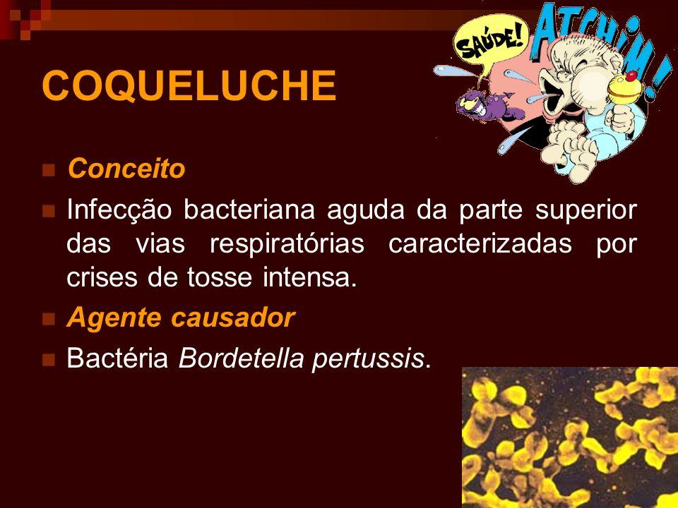 Sinais e sintomas De modo geral, a doença passa por três fases, com as seguintes características: Primeira fase-muita secreção catarral na garganta, sem distinção de outras doenças respiratórias agudas; febre pouco intensa,mal-estar geral, coriza, tosse.