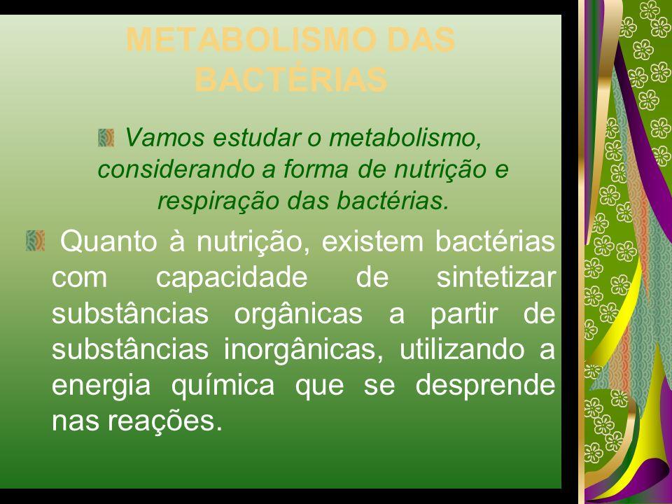 METABOLISMO DAS BACTÉRIAS Vamos estudar o metabolismo, considerando a forma de nutrição e respiração das bactérias. Quanto à nutrição, existem bactéri