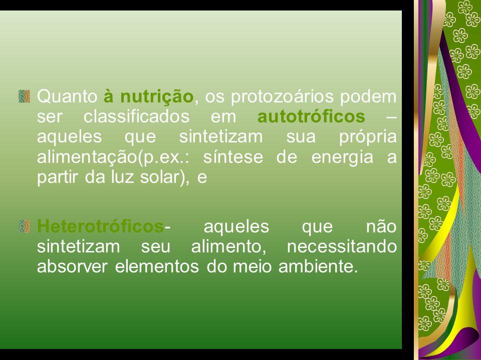 Quanto à nutrição, os protozoários podem ser classificados em autotróficos – aqueles que sintetizam sua própria alimentação(p.ex.: síntese de energia