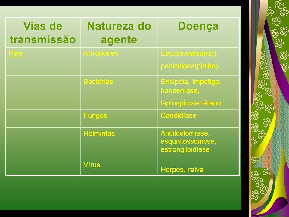 Vias de transmissão Natureza do agente Doença PeleArtrópodesEscabiose(sarna), pediculose(piolho) BactériasErisipela, impetigo, hanseníase, leptospiros