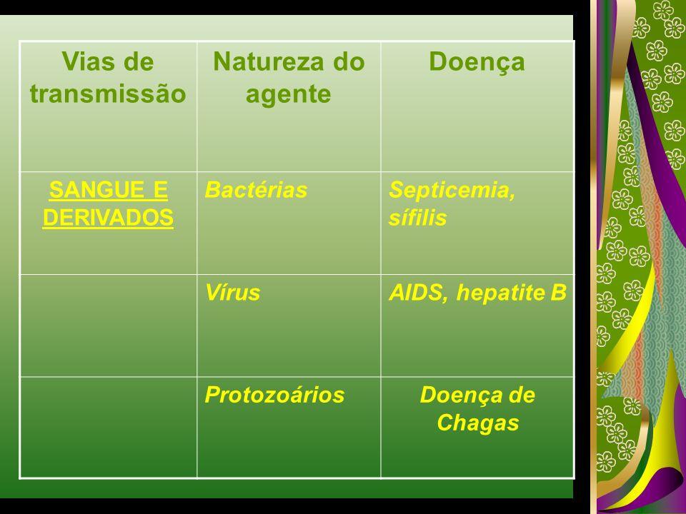 Vias de transmissão Natureza do agente Doença SANGUE E DERIVADOS BactériasSepticemia, sífilis VírusAIDS, hepatite B ProtozoáriosDoença de Chagas