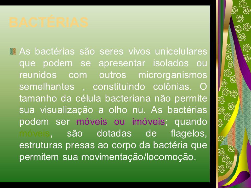BACTÉRIAS As bactérias são seres vivos unicelulares que podem se apresentar isolados ou reunidos com outros microrganismos semelhantes, constituindo c