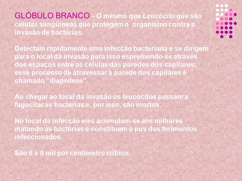 GLÓBULO BRANCO - O mesmo que Leucócito que são células sangüíneas que protegem o organismo contra a invasão de bactérias. Detectam rapidamente uma inf