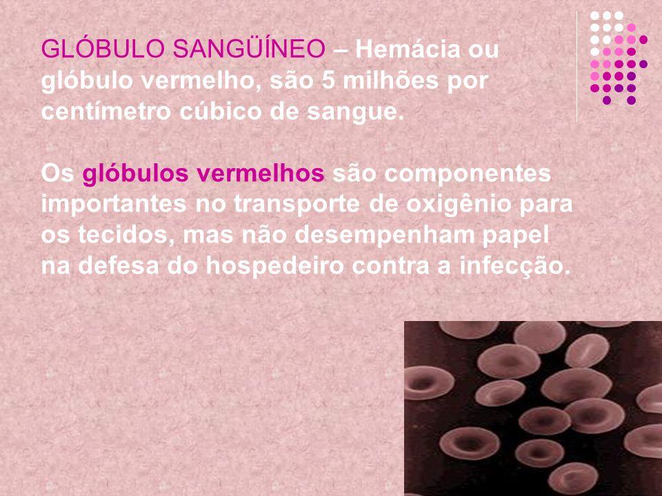 GLÓBULO SANGÜÍNEO – Hemácia ou glóbulo vermelho, são 5 milhões por centímetro cúbico de sangue. Os glóbulos vermelhos são componentes importantes no t