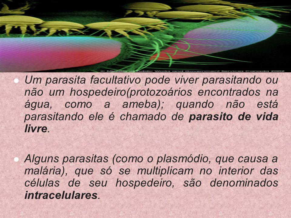 Um parasita facultativo pode viver parasitando ou não um hospedeiro(protozoários encontrados na água, como a ameba); quando não está parasitando ele é