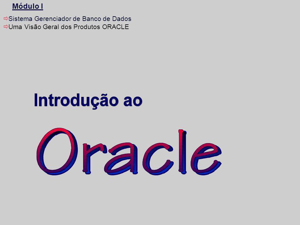 2 Sistema Gerenciador de Banco de Dados Objetivos desta Unidade: –Esta unidade descreve conceitos de Bancos de Dados Relacionais tendo como enfoque o ORACLE.