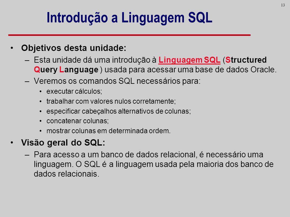 13 Introdução a Linguagem SQL Objetivos desta unidade: –Esta unidade dá uma introdução à Linguagem SQL (Structured Query Language ) usada para acessar