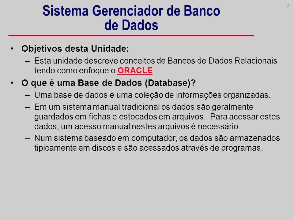 2 Sistema Gerenciador de Banco de Dados Objetivos desta Unidade: –Esta unidade descreve conceitos de Bancos de Dados Relacionais tendo como enfoque o