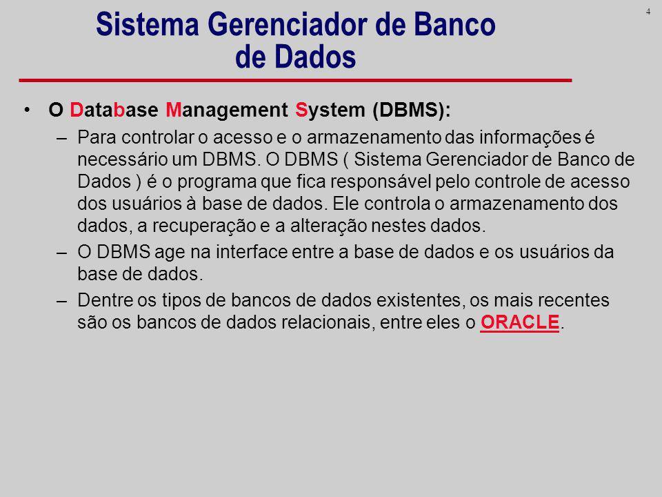 4 Sistema Gerenciador de Banco de Dados O Database Management System (DBMS): –Para controlar o acesso e o armazenamento das informações é necessário u