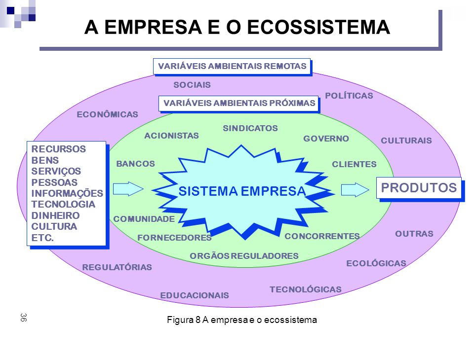 A EMPRESA E O ECOSSISTEMA RECURSOS BENS SERVIÇOS PESSOAS INFORMAÇÕES TECNOLOGIA DINHEIRO CULTURA ETC.