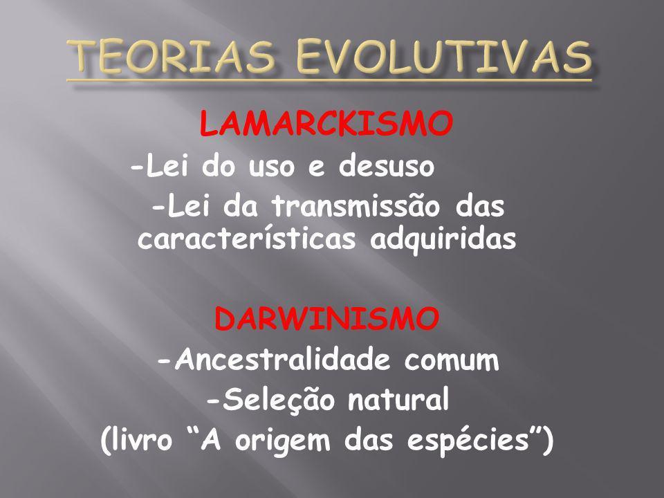 LAMARCKISMO -Lei do uso e desuso -Lei da transmissão das características adquiridas DARWINISMO -Ancestralidade comum -Seleção natural (livro A origem