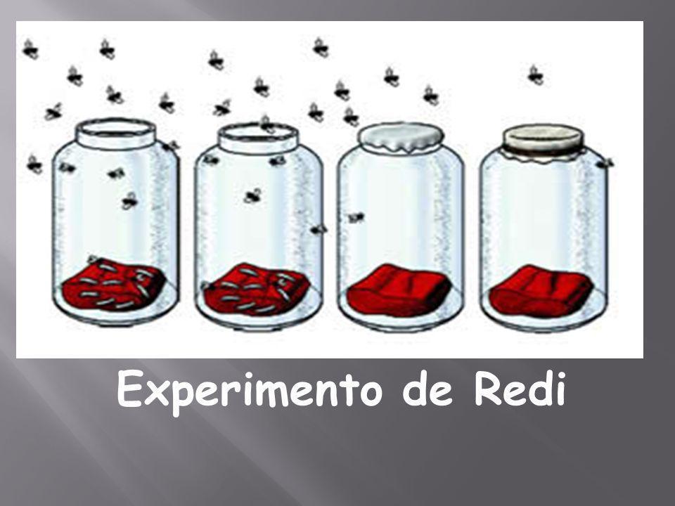 Experimento de Spalanzani