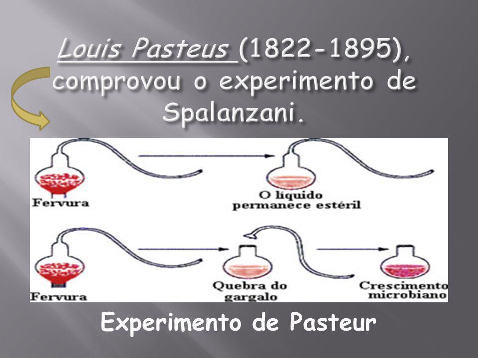 Teoria do Criacionismo – por criação divina ?????.