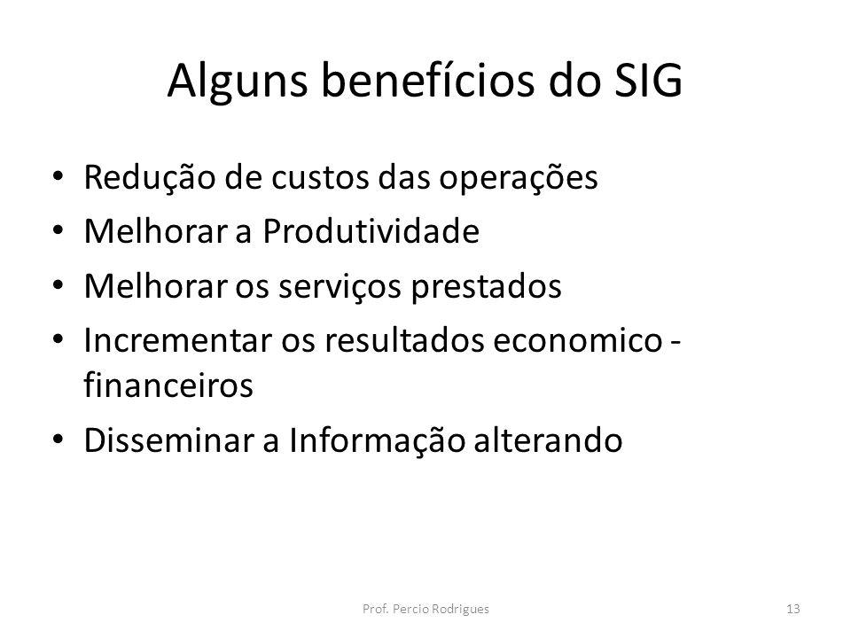 Alguns benefícios do SIG Redução de custos das operações Melhorar a Produtividade Melhorar os serviços prestados Incrementar os resultados economico - financeiros Disseminar a Informação alterando Prof.