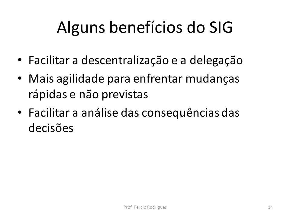 Alguns benefícios do SIG Facilitar a descentralização e a delegação Mais agilidade para enfrentar mudanças rápidas e não previstas Facilitar a análise das consequências das decisões Prof.