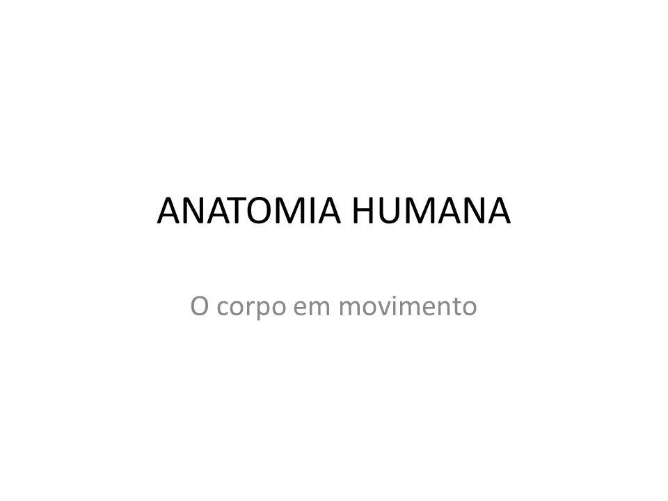 ANATOMIA HUMANA O corpo em movimento