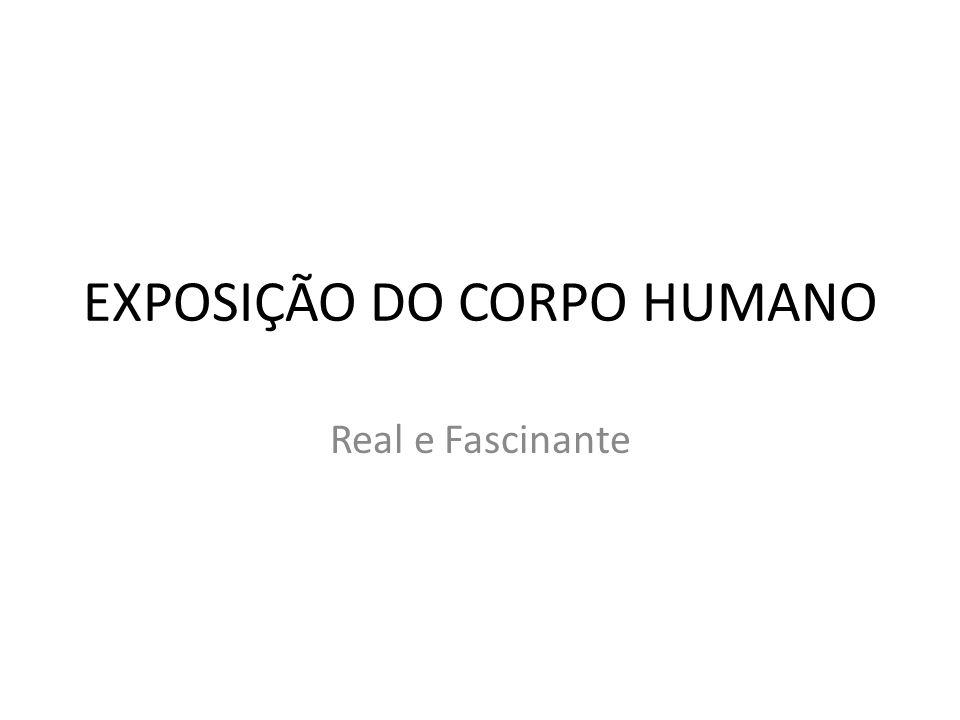 EXPOSIÇÃO DO CORPO HUMANO Real e Fascinante