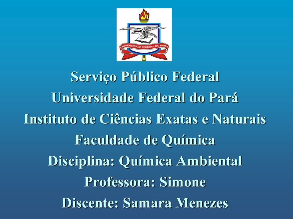 Serviço Público Federal Universidade Federal do Pará Instituto de Ciências Exatas e Naturais Faculdade de Química Disciplina: Química Ambiental Profes