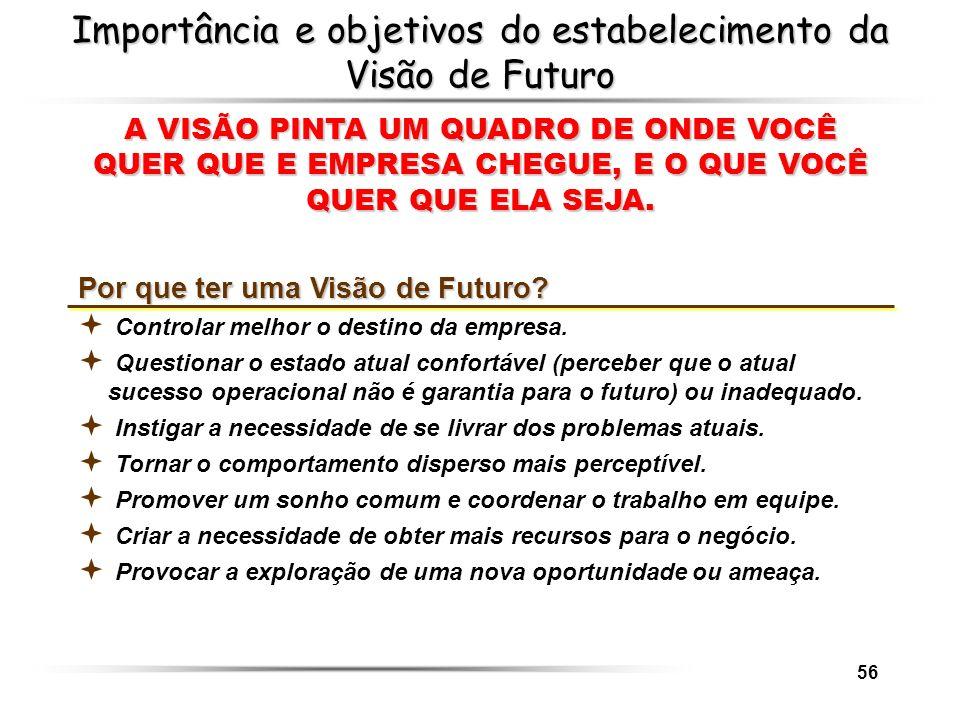 56 Importância e objetivos do estabelecimento da Visão de Futuro A VISÃO PINTA UM QUADRO DE ONDE VOCÊ QUER QUE E EMPRESA CHEGUE, E O QUE VOCÊ QUER QUE