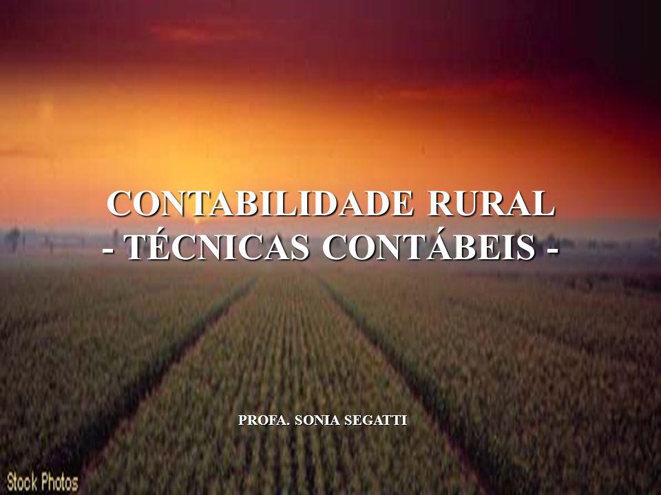 1 CONTABILIDADE RURAL - TÉCNICAS CONTÁBEIS - PROFA. SONIA SEGATTI