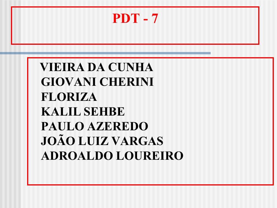 PDT - 7 VIEIRA DA CUNHA GIOVANI CHERINI FLORIZA KALIL SEHBE PAULO AZEREDO JOÃO LUIZ VARGAS ADROALDO LOUREIRO