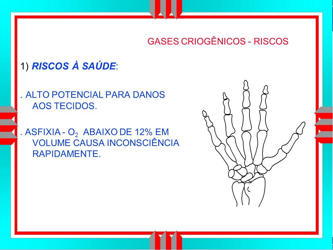 Título da Apresentação GASES CRIOGÊNICOS - RISCOS 1) RISCOS À SAÚDE:.