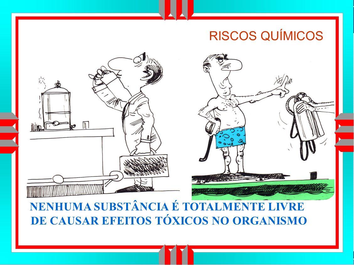 Título da Apresentação RISCOS QUÍMICOS NENHUMA SUBSTÂNCIA É TOTALMENTE LIVRE DE CAUSAR EFEITOS TÓXICOS NO ORGANISMO