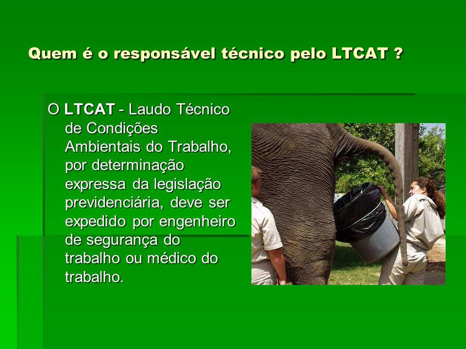Quem é o responsável técnico pelo LTCAT ? O LTCAT - Laudo Técnico de Condições Ambientais do Trabalho, por determinação expressa da legislação previde