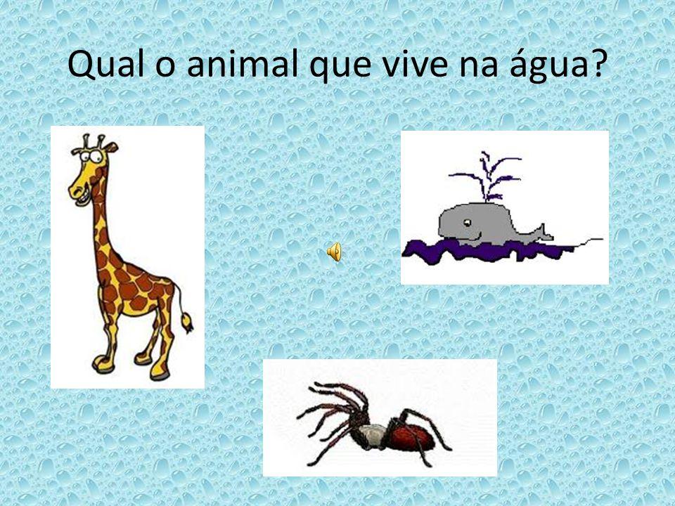 Qual o animal que vive na água?
