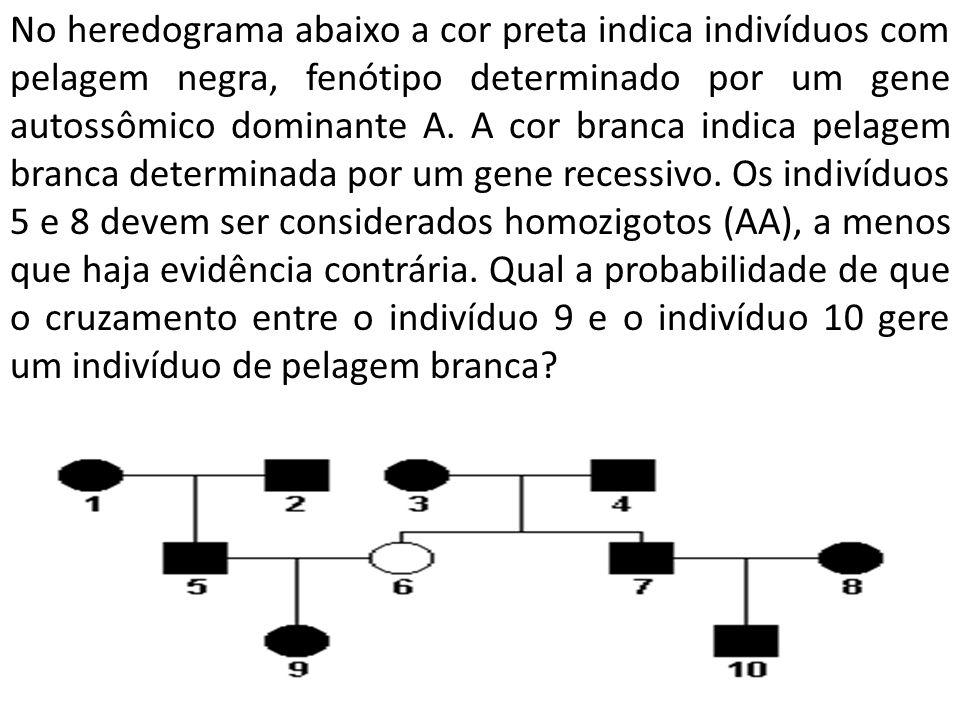No heredograma abaixo a cor preta indica indivíduos com pelagem negra, fenótipo determinado por um gene autossômico dominante A. A cor branca indica p