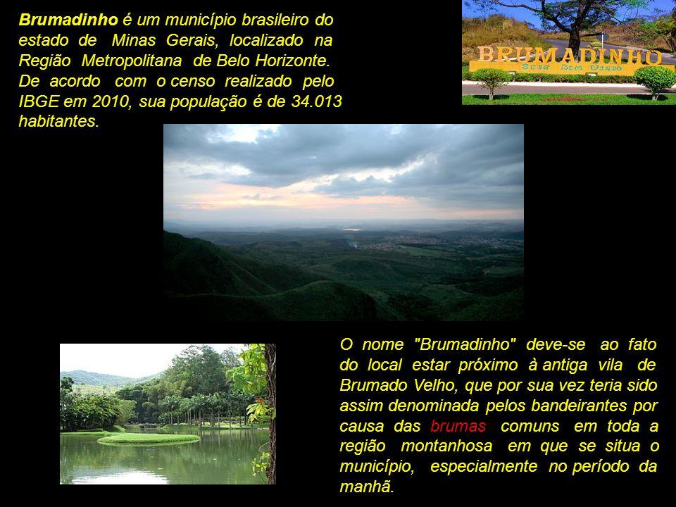 Brumadinho é um município brasileiro do estado de Minas Gerais, localizado na Região Metropolitana de Belo Horizonte.