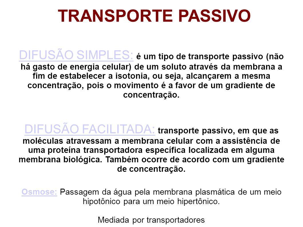DIFUSÃO SIMPLES:DIFUSÃO SIMPLES: é um tipo de transporte passivo (não há gasto de energia celular) de um soluto através da membrana a fim de estabelec