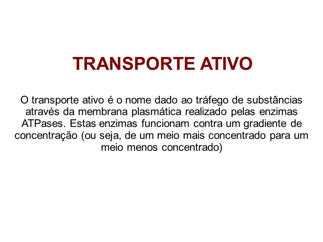 TRANSPORTE ATIVO O transporte ativo é o nome dado ao tráfego de substâncias através da membrana plasmática realizado pelas enzimas ATPases. Estas enzi