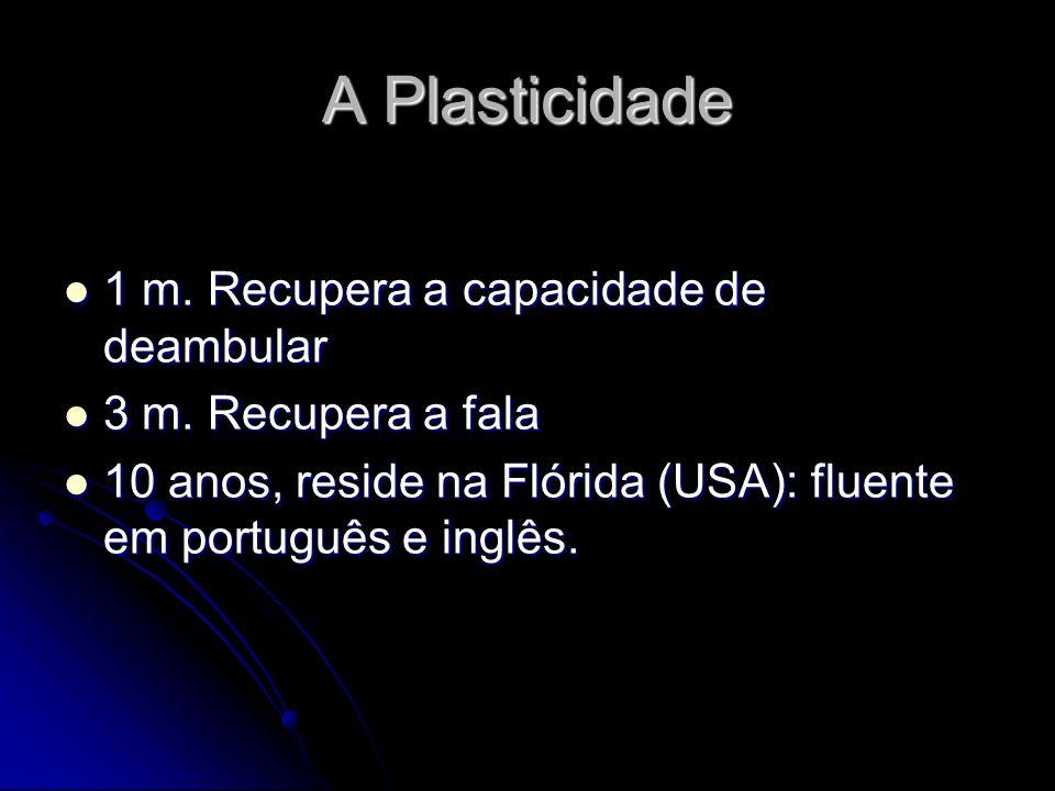 A Plasticidade 1 m.Recupera a capacidade de deambular 1 m.