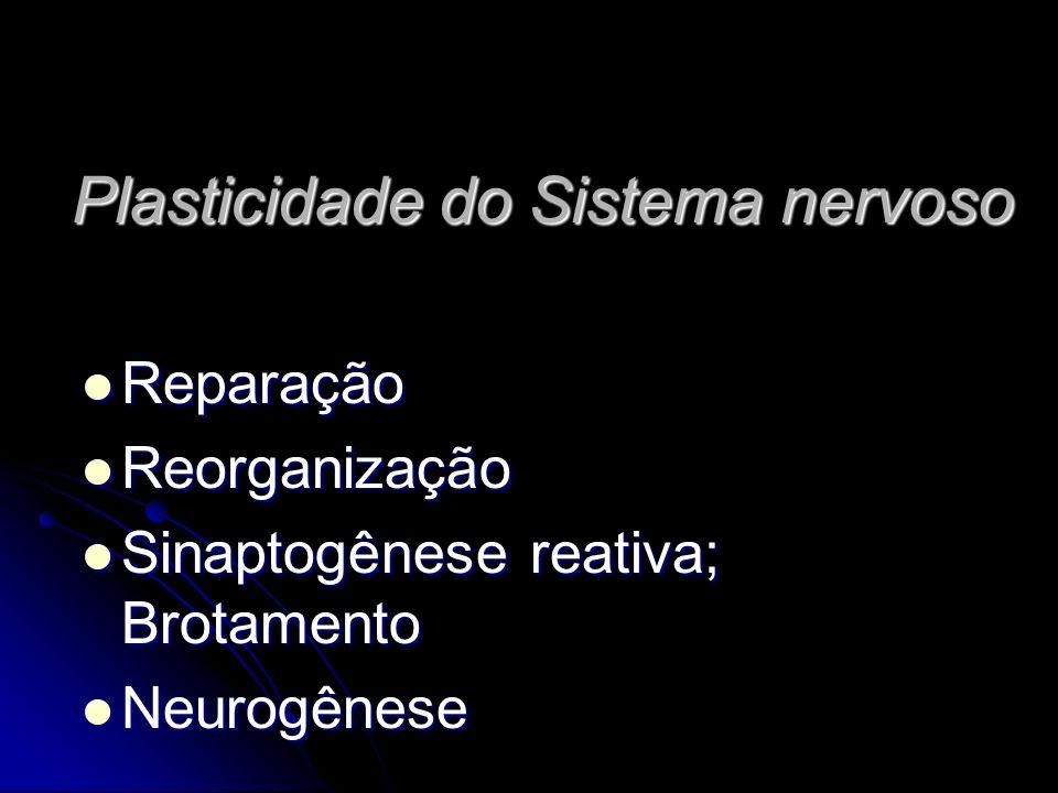 Plasticidade do Sistema nervoso Reparação Reparação Reorganização Reorganização Sinaptogênese reativa; Brotamento Sinaptogênese reativa; Brotamento Neurogênese Neurogênese