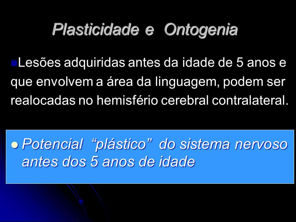 Plasticidade e Ontogenia Potencial plástico do sistema nervoso antes dos 5 anos de idade Potencial plástico do sistema nervoso antes dos 5 anos de idade Lesões adquiridas antes da idade de 5 anos e que envolvem a área da linguagem, podem ser realocadas no hemisfério cerebral contralateral.