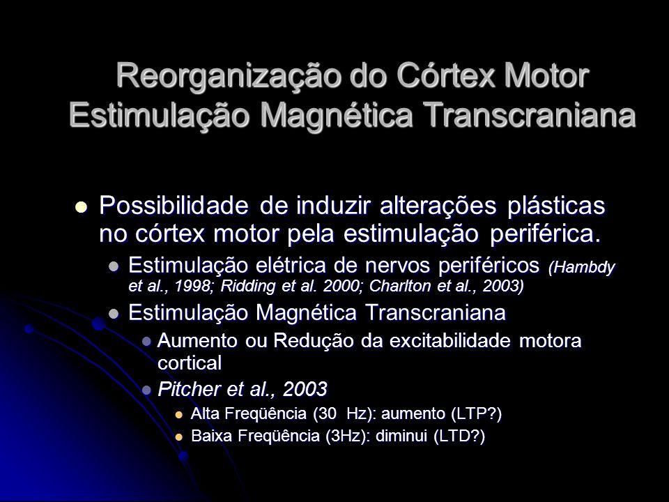 Reorganização do Córtex Motor Estimulação Magnética Transcraniana Possibilidade de induzir alterações plásticas no córtex motor pela estimulação periférica.