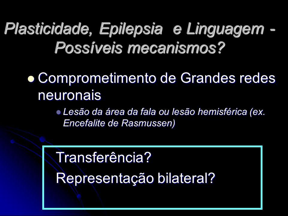Plasticidade, Epilepsia e Linguagem - Possíveis mecanismos.