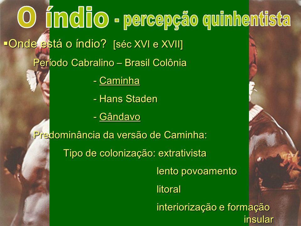 Onde está o índio? [séc XVI e XVII] Onde está o índio? [séc XVI e XVII] Período Cabralino – Brasil Colônia - Caminha Caminha - Hans Staden - Gândavo G