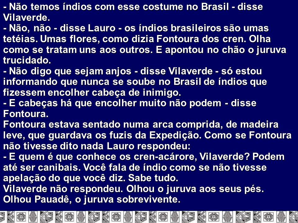 - Não temos índios com esse costume no Brasil - disse Vilaverde. - Não, não - disse Lauro - os índios brasileiros são umas tetéias. Umas flores, como