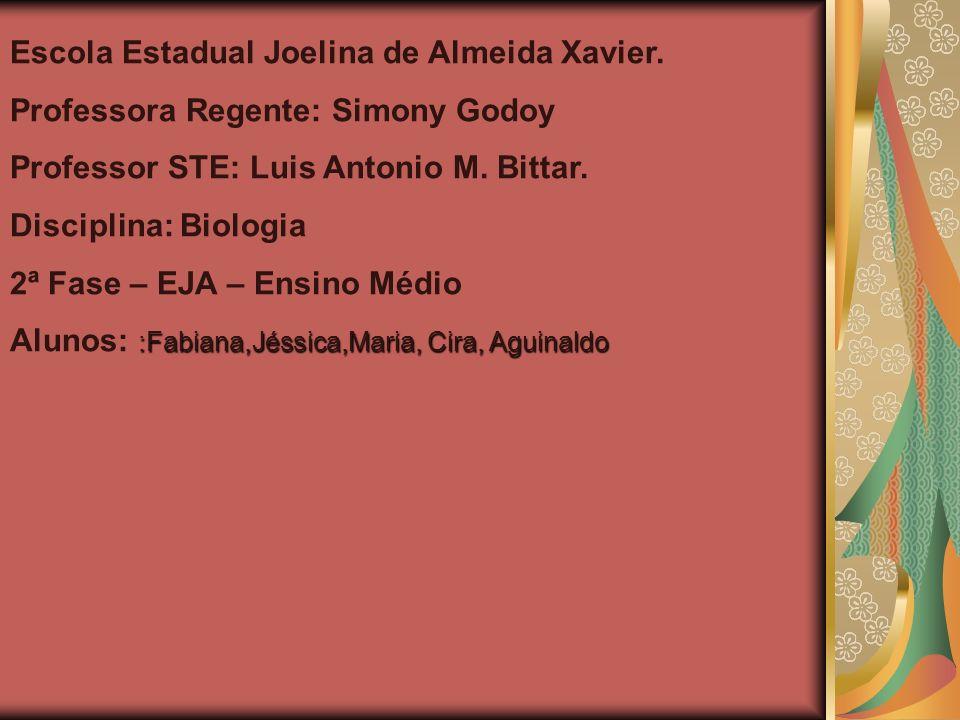Escola Estadual Joelina de Almeida Xavier. Professora Regente: Simony Godoy Professor STE: Luis Antonio M. Bittar. Disciplina: Biologia 2ª Fase – EJA
