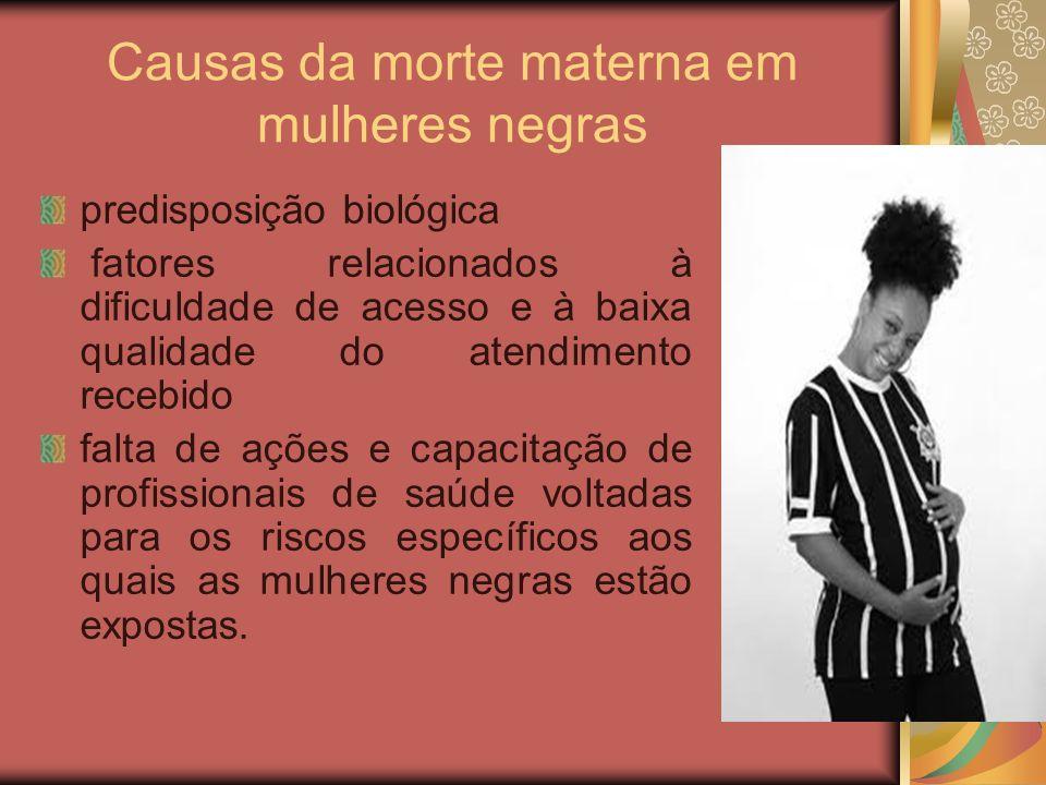 Causas da morte materna em mulheres negras predisposição biológica fatores relacionados à dificuldade de acesso e à baixa qualidade do atendimento rec
